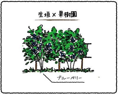 生垣と果樹園