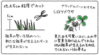 雑草マルチング