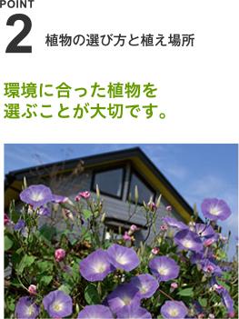 植物の選び方と植え場所 環境に合った植物を選ぶことが大切です。